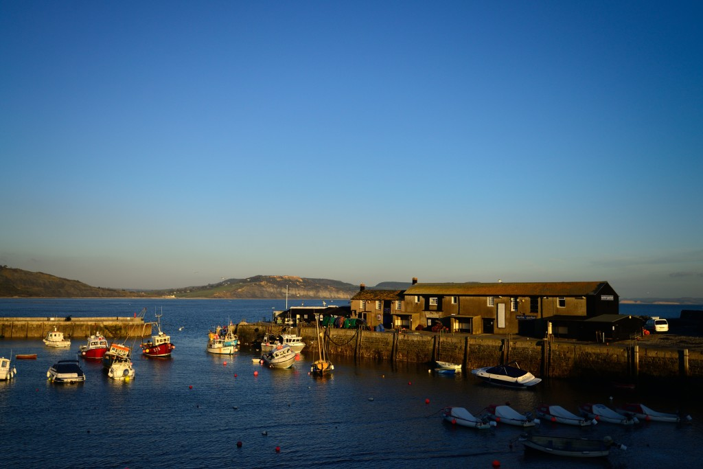 Lyme Regis harbour, Richard Aspinall