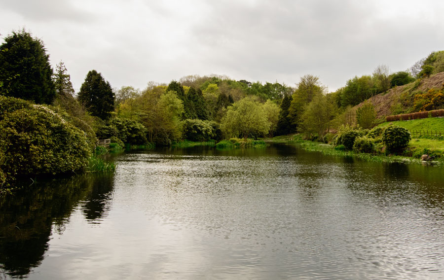 The Lake by Angie Aspinall