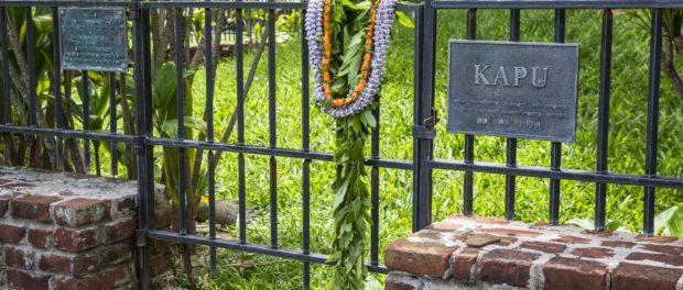 The Sacred Mound at Iolani Palace Oahu Honolulu Credit: Hawaii Tourism Authority (HTA) / Tor Johnson Content Creator Company:Tor Johnson Photography